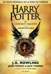 harry-potter-et-l-enfant-maudit-794944-264-432
