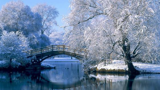 hiver-central-park