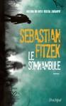le-somnambule-899125-264-432